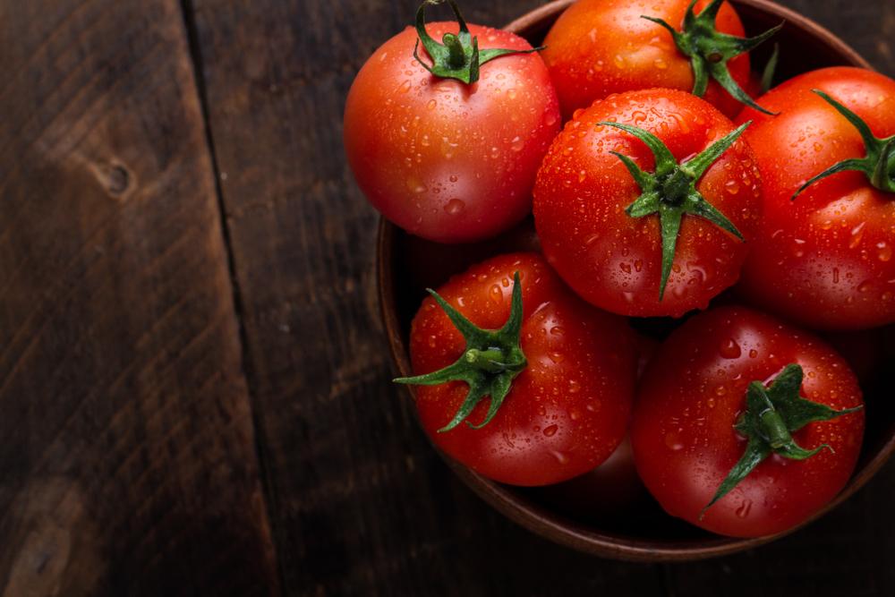 トマトを丸ごと埋めると発芽するって本当?トマト栽培の裏技について
